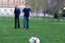 During their engagement session in Orono, Amy and Chris played with their puppy