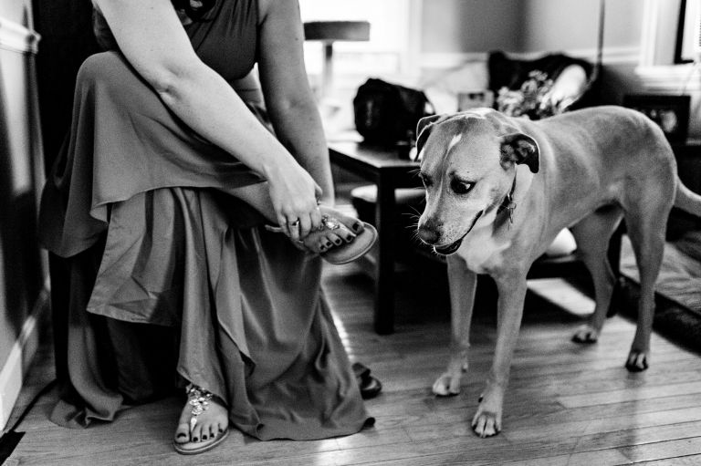 A bridesmaid puts on her shoes while a dog watches at a Brunswick Maine elopement